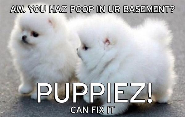 puppiez