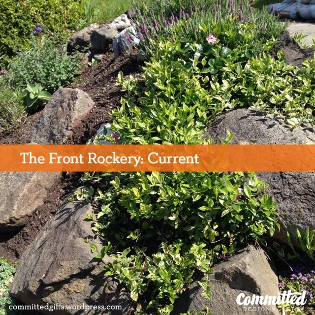 Rockery plantings